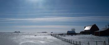 Ein gefrorenes Feld im ersten Vorwahlstaat Iowa.