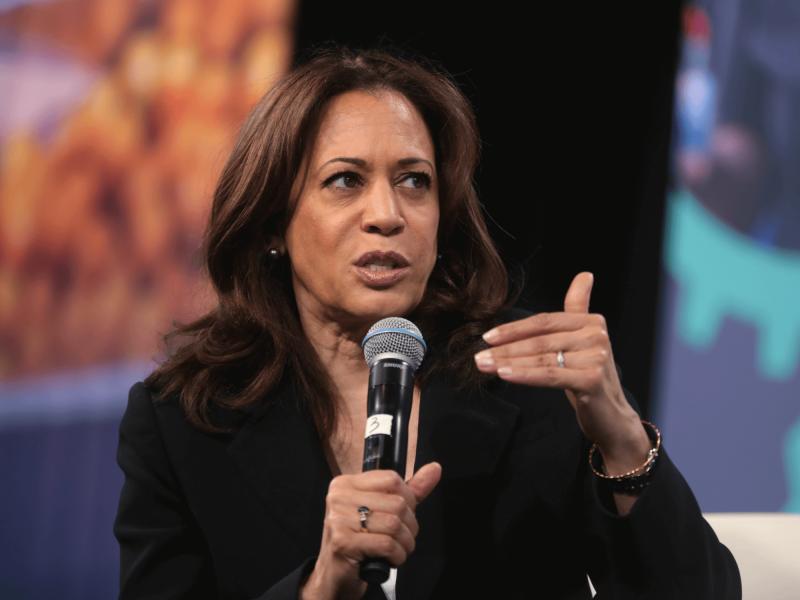 Kamala Harris bringt als Bidens Vize neuen Schwung in den Wahlkampf des Demokraten.